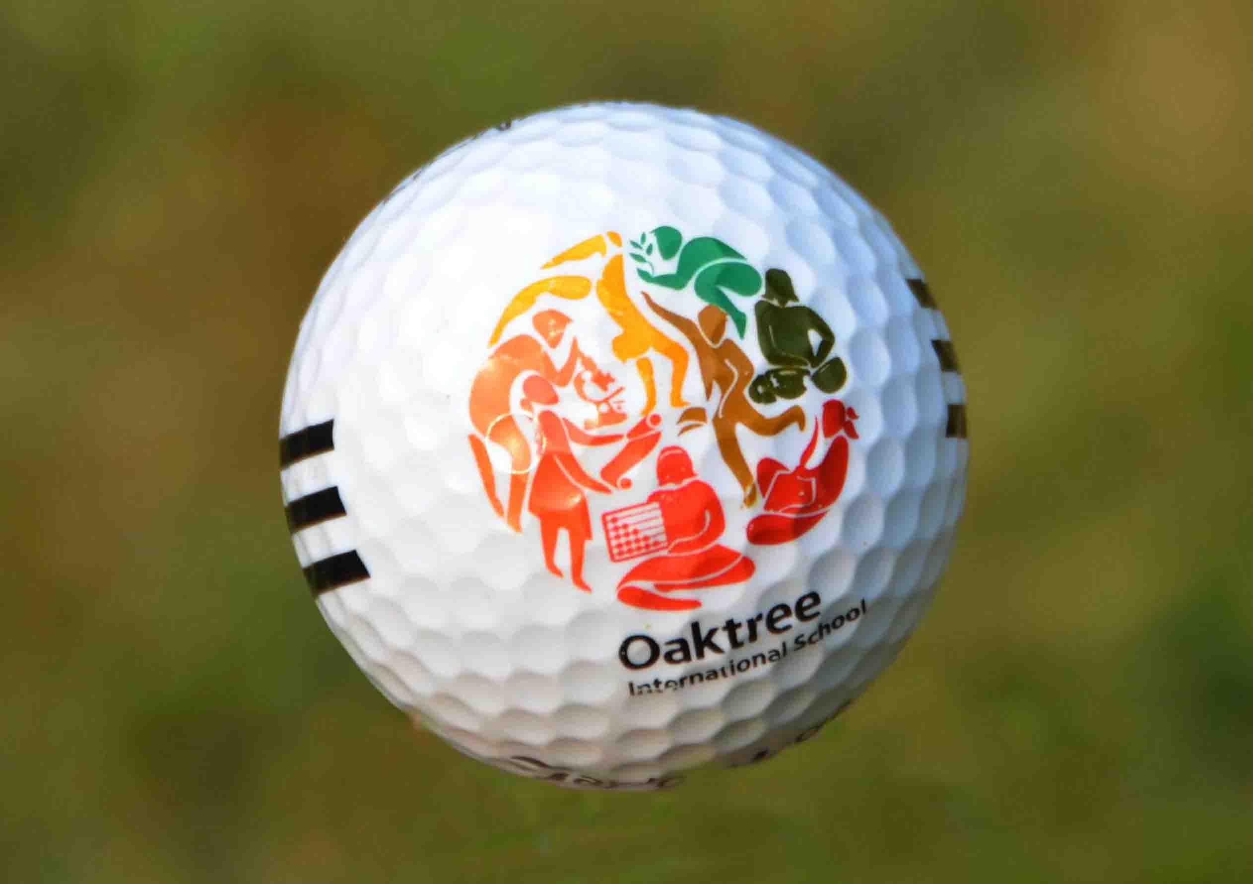 Artech Pad Printed Golf Balls